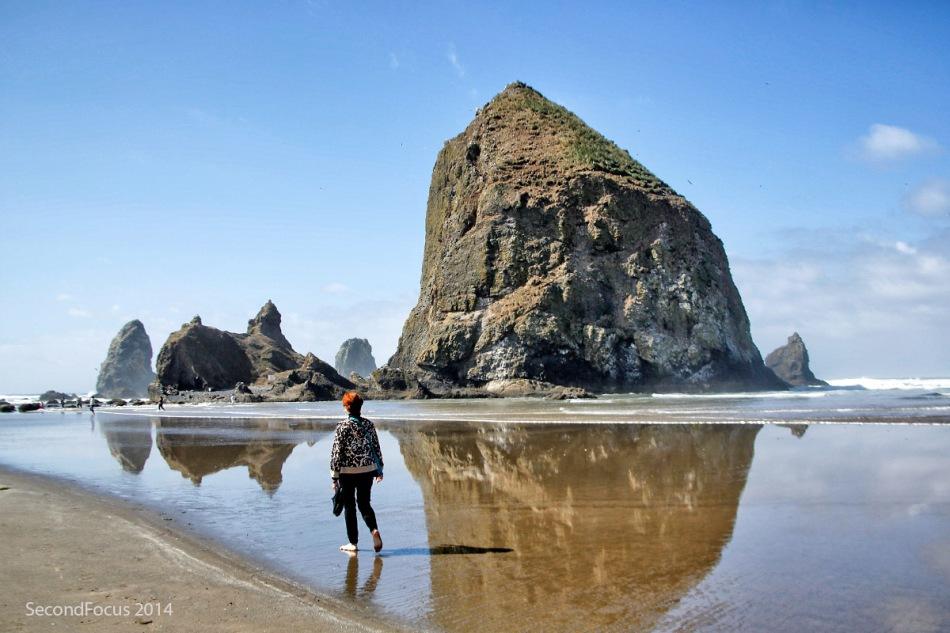 Rosie At Haystack Rock At Cannon Beach Oregon