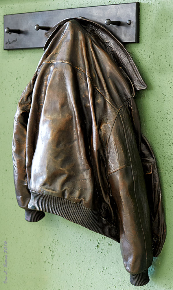 Bronze Aviator Jacket