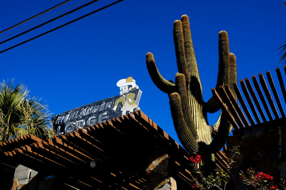 Highlander Lodge Sign And Cactus